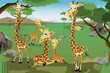 Family of Giraffes