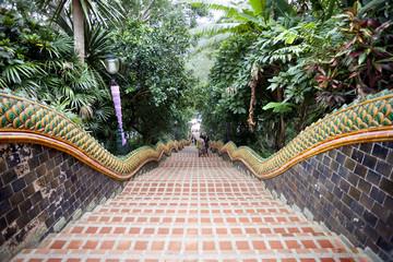 Naga Stairway, Doi Suthep Temple