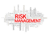 """RISK MANAGEMENT"" Tag Cloud (strategy money finance investment)"