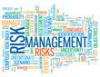 """RISK MANAGEMENT"" Tag Cloud (strategy finance money investment)"