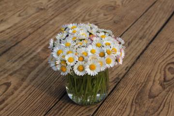 Gänseblümchen  im Wasserglas auf Holzboden