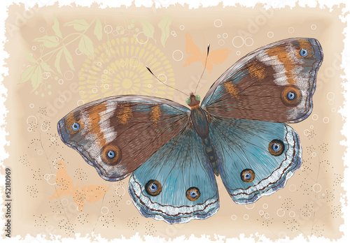 Beautiful butterfly on a retro background