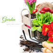 Fresh Flowers With Garden Tools