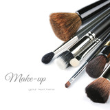 Various makeup brushes
