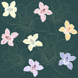 Floral seamless pattern with orchids.