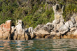 seal basking on rocks in Abel Tasman National Park