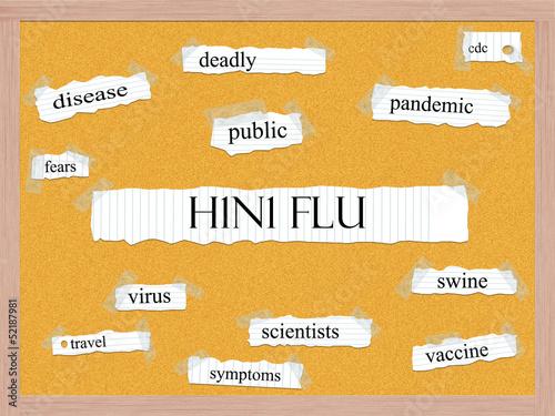 H1N1 Flu Corkboard Word Concept