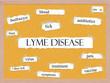 Lyme Disease Corkboard Word Concept