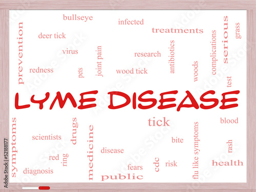 Lyme Disease Word Cloud Concept on a Whiteboard