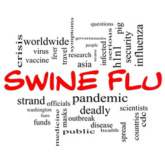 Swine Flu Word Cloud Concept in Red Caps