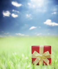 Present on grassy background