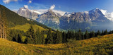 Panoramic view n the beautiful hills of Swiss Alps