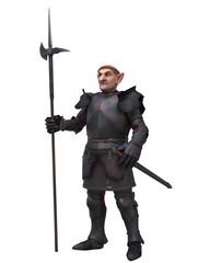 Fantasy Gnome Knight