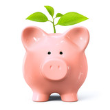 Piggy bank with plant