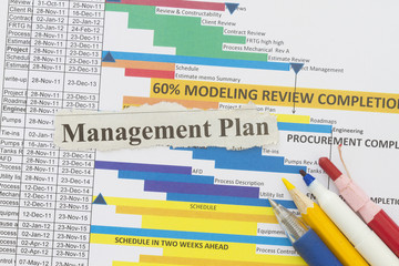 Management plan