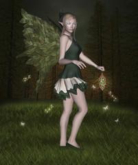 Fireflies night