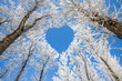 Leinwandbild Motiv Winter landscape,branches form a heart-shaped pattern