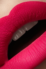 Full woman's lips with bright fashion mat pink makeup