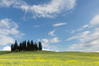Blue sky of Tuscany
