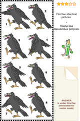 Visual puzzle - find two identical images of ravens