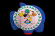 piggy rich bank in colors national flag of belize   for saving m