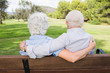 Loving elderly couple on a park bench