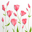 Flower vector background. Pink eustoma