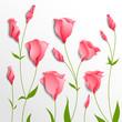 Flower vector background. Pink eustoma