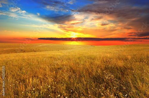 Sunset over the wild field