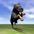 Rottweiler dog jumping - 3D render