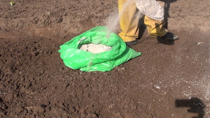 fertilize spring garden soil with organic wood ash