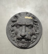 Lion classic architectural element hanging on garden wall