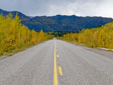 Fall at Robert Campbell Hwy Yukon Territory Canada