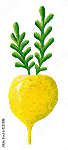 Yellow turnip