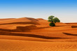 canvas print picture - Desert of North Africa, sandy barkhans
