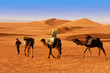 The Berbesky tribe passes the desert in Africa