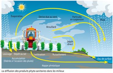 Pollution par les pesticides