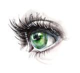 Fototapety green eye