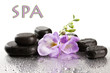 Spa Stones And Purple Flower, ...