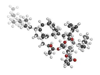 Fish oil triglyceride, molecular model