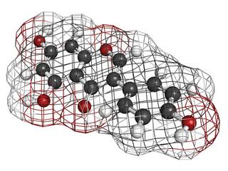 Genistein isoflavone, molecular model
