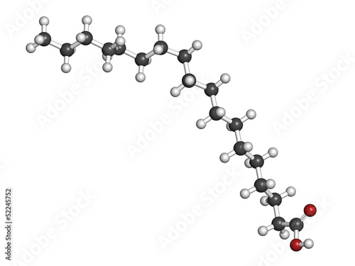 Stearic acid saturated fatty acid, molecular model