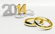 sposarsi nel 2014, scelta fedi
