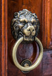 Lion head, brass door knocker
