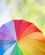 Walk in a park concept, rainbow umbrella on a tree background
