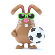 Chocolate Bunny Plays Football