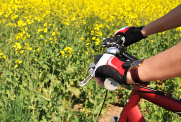Hands in a gloves on the handlebar of a mountain bike