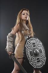 viking 8