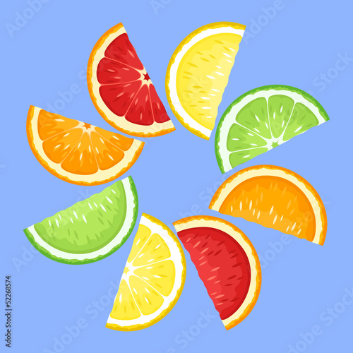 Citrus fruits slices on blue. Vector illustration.