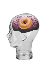 Donut Brain.